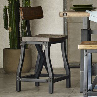 Caseareo 24.5 Bar Stool Trent Austin Design