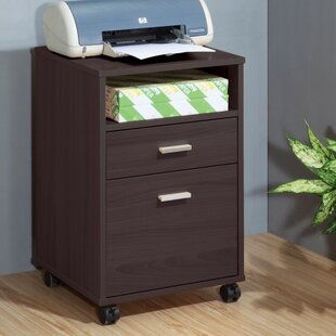 Latitude Run Wafer 2-Drawer Vertical Fill..