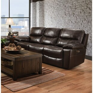 Palethorp Soft Touch Reclining Sofa