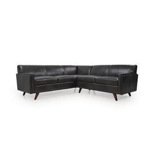 Ari Leather Sectional by C..