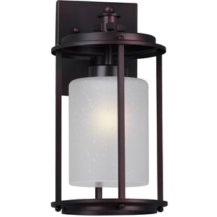 Latitude Run Bulkley 1-Light Outdoor Wall Lantern