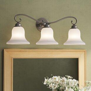Three Posts Enfield 3-Light Vanity Light