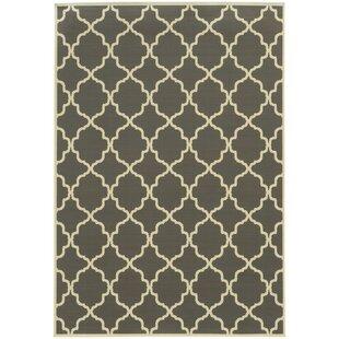 Heidy Geometric Gray Ivory Stain Resistant Indoor Outdoor Area Rug
