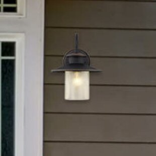 Online Reviews Delmont 1-Light Outdoor Barn Light By Westinghouse Lighting
