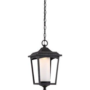 Bargain Mason 1-Light LED Outdoor Hanging Lantern By Laurel Foundry Modern Farmhouse