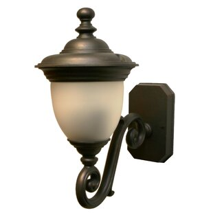 Phillipstown 2-Light Outdoor Sconce By Alcott Hill Outdoor Lighting