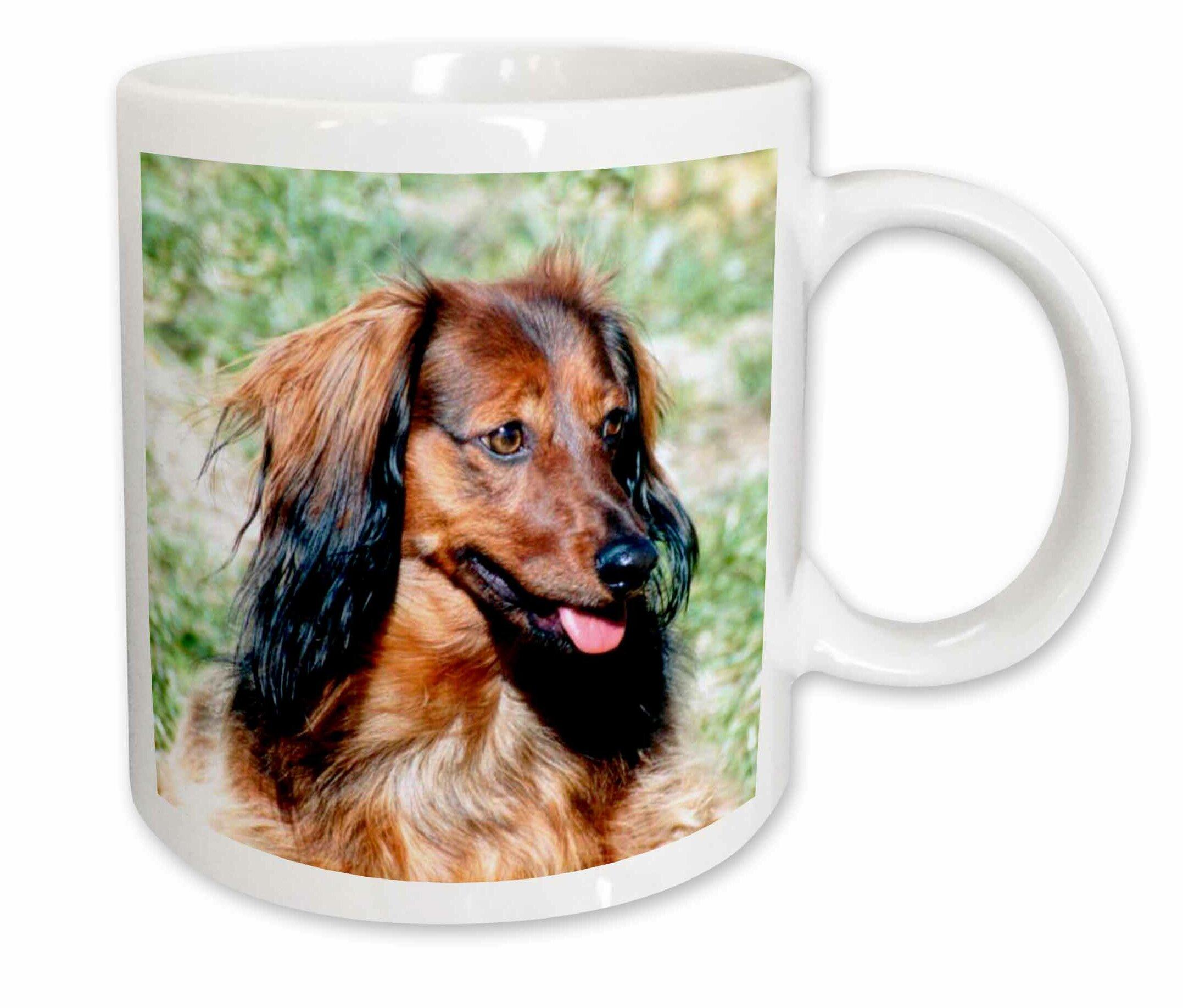 East Urban Home Longhair Dachshund Coffee Mug Wayfair