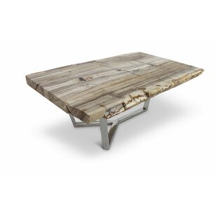 Ordonez Coffe Table by Union Rustic