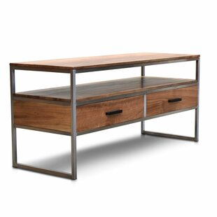 Aptos TV Stand for TVs up to 48
