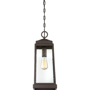 Endres 1-Light Outdoor Hanging Lantern by Charlton Home Top Reviews