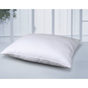 Cottonloft Cotton Pillow (Set of 2)