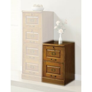Darby Home Co Del 2-Drawer Vertical Filing Cabinet