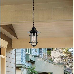 Breakwater Bay Norgren 1-Light Outdoor Hanging Lantern