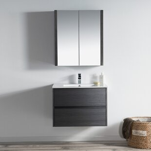 Affordable Oquendo 30 Wall-Mounted Single Bathroom Vanity Set with Medicine Cabinet By Orren Ellis