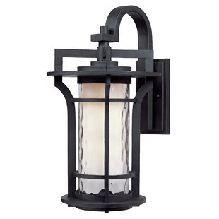 Shop For Espitia 1-Light Outdoor Wall Lantern By Millwood Pines
