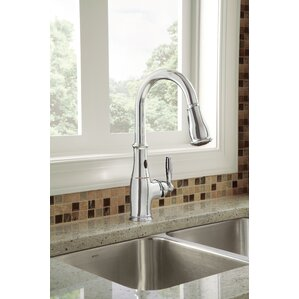 Moen Brantford Single Handle Kitchen Faucet