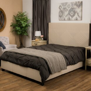 Darby Home Co Robinette Upholstered Panel Bed