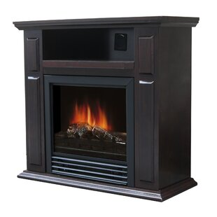 Wellesley Electric Fireplace by Charlton Home