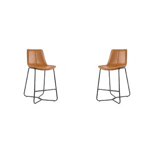 Willbanks 26 Counter Stool Set of 2