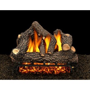 Cheyenne Glow Vented Propane Natural Gas Fireplace Log Set By American Gas Log Reviews Gas Fireplaces Stoves Sales