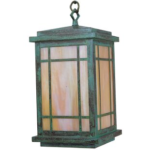 Avenue 1-Light Outdoor Hanging Lantern