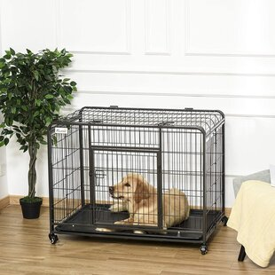 Small 46cm Henry Wag Fold Flat Fabric Pet Crate