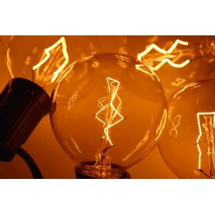 The Paper Lantern Store 10-Light 10 ft. Globe String Lights