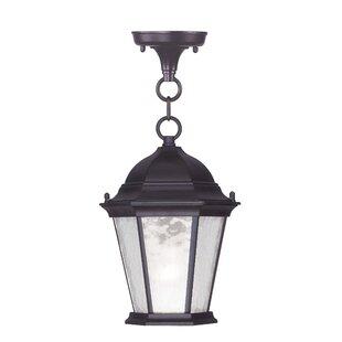 Weisberg 1- Light Outdoor Hanging Lantern by Charlton Home