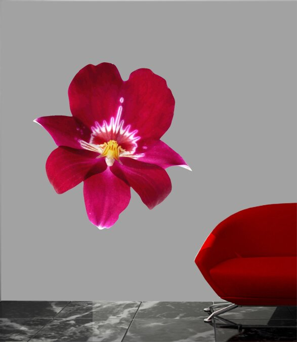 Ebern Designs Goudeau Cutout Orchid Wall Decal Wayfair