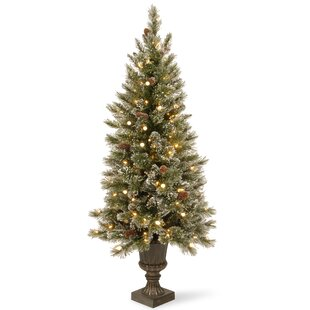 greenwhite pine trees artificial christmas tree with 150 incandescent clearwhite lights