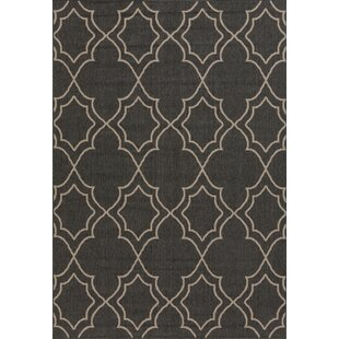 Best Choices Amato Power Loomed Black/Camel Indoor/Outdoor Area Rug By Alcott Hill