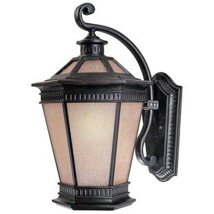 Find Ternate 1-Light Outdoor Wall Lantern By Bloomsbury Market