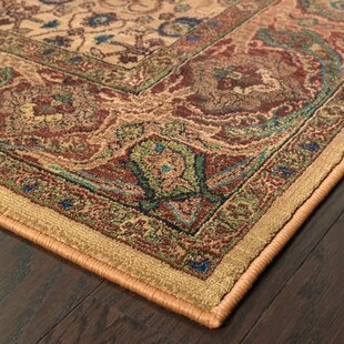 Pressley Brown Indoor/Outdoor Area Rug
