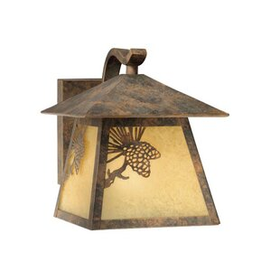Great Price Josefina 1-Light Glass Shaded Outdoor Wall Lantern By Loon Peak