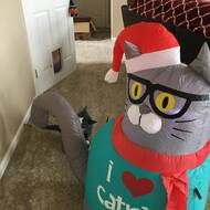 The Holiday Aisle Outdoor Nerdy Cat Christmas Inflatable Reviews Wayfair