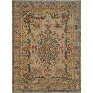 Cactus Lane Vintage Distressed Overdyed Hand Knotted Beige Area Rug