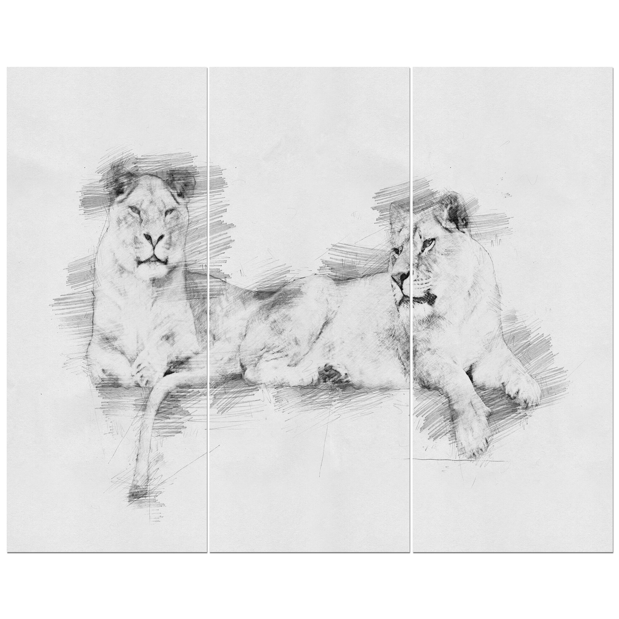 East urban home black and white lion pencil sketch oil painting print multi piece image on wrapped canvas wayfair