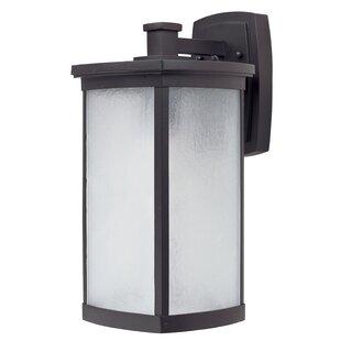 Latitude Run Fielden Outdoor Wall Lantern