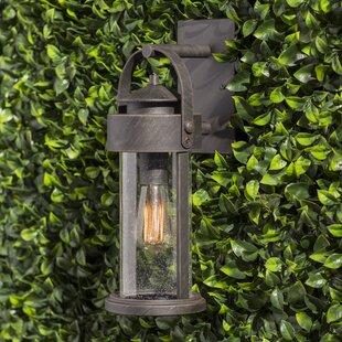 Gracie Oaks Zielinski Outdoor Wall Lantern