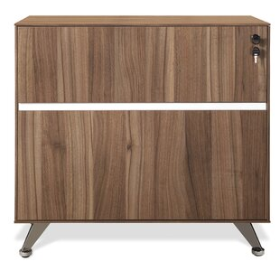 Bergerson 2 Drawer Lateral File Cabinet by Comm Office Best Design