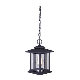 Gracie Oaks Barnesbury 1-Light Outdoor Hanging Lantern