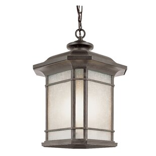 Loon Peak Newbury 1-Light Outdoor Hanging Lantern