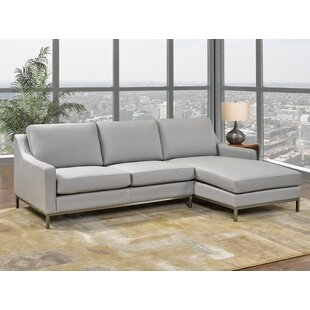 Bland Leather Sectional