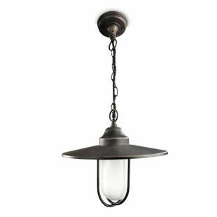 Philips 1 Light Outdoor Pendant By Philips