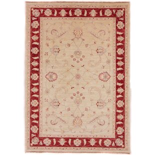 Chattooga Hand Knotted Wool Beige/Red Rug by Rosalind Wheeler