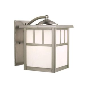 Joelle 1-Light 60W Outdoor Wall Lantern