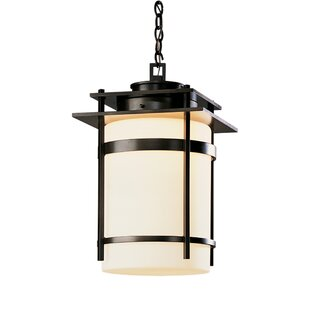 Order 1-Light Outdoor Pendant By Hubbardton Forge