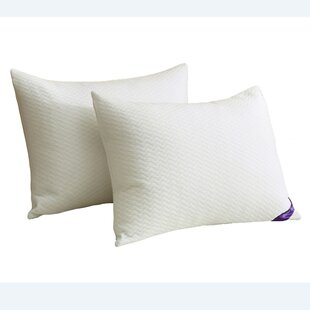 Edna Plush Down and Feathers Bed Pillow (Set of 2)