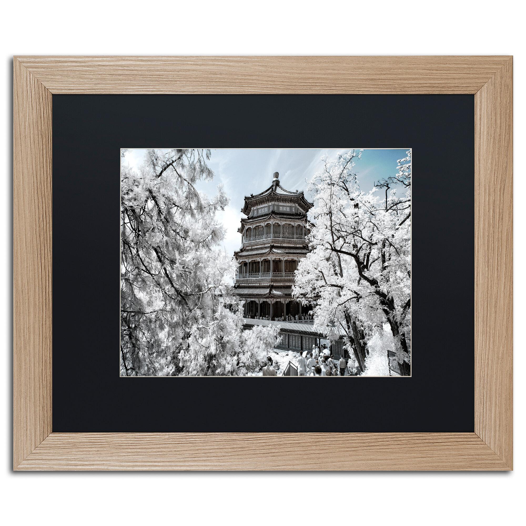 Trademark Art White Temple I By Philippe Hugonnard Framed Photographic Print Wayfair