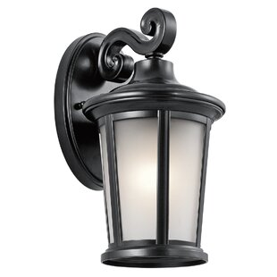 Online Reviews Clarington 1-Light Outdoor Wall Lantern By Darby Home Co